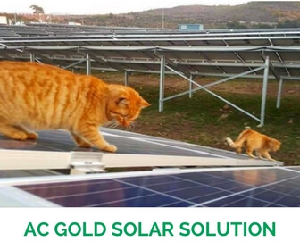 1000 W AC Gold Solar Solution